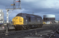 37011 Inverness